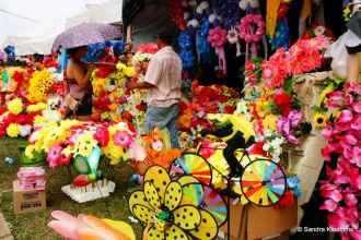 You can buy all sorts of plastic flowers.